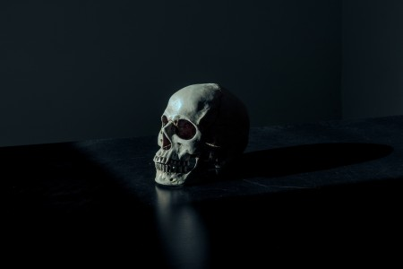 skull, skeleton, darkness, scary