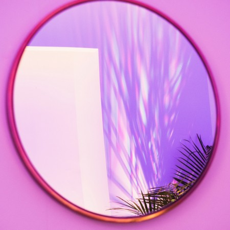 pink, purple, mirror, holographic, plant